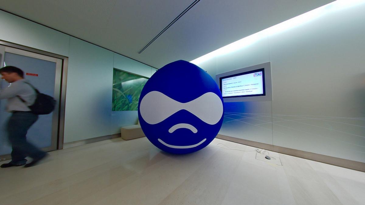 Inflatable Drupal mascot
