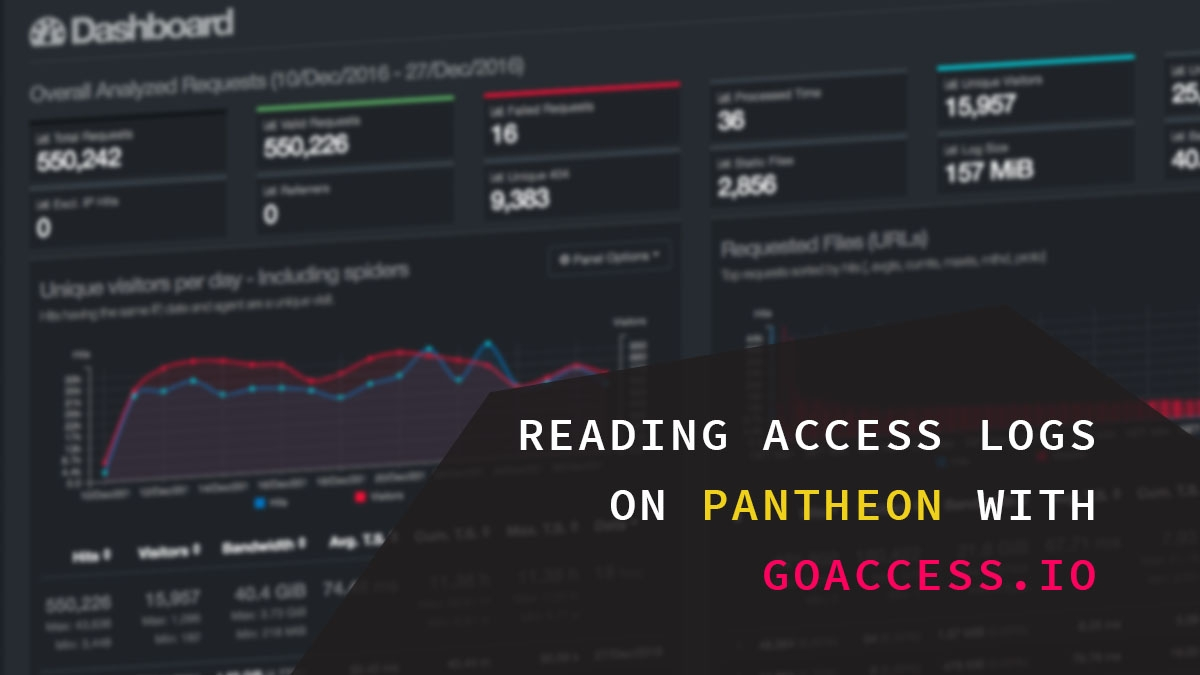 Reading access logs on Pantheon using GoAccess