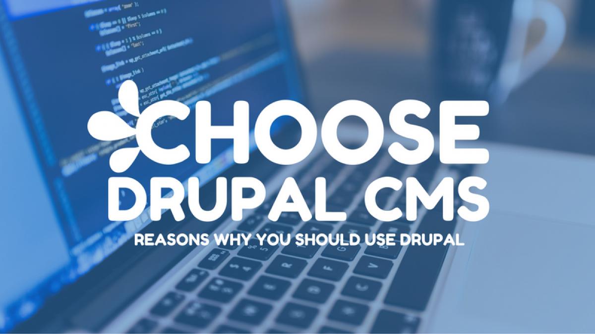 choose drupal