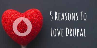 reasons to love drupal