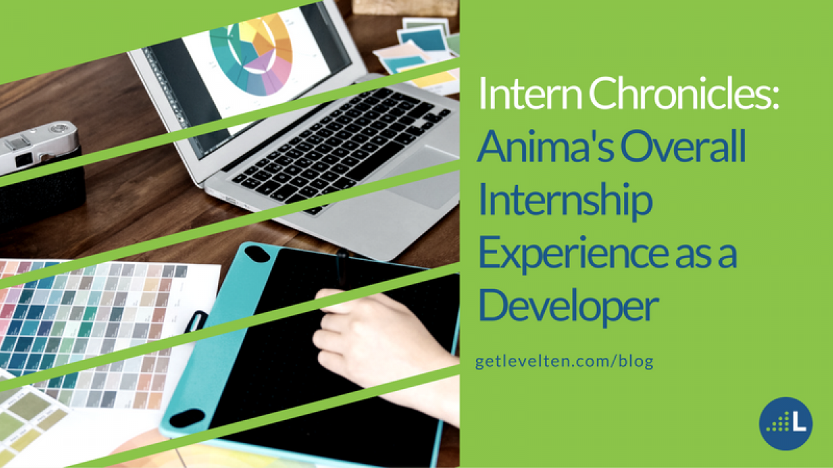 Intern Chronicles: Anima's overall internship experience as a developer