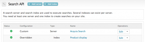 search api index and server